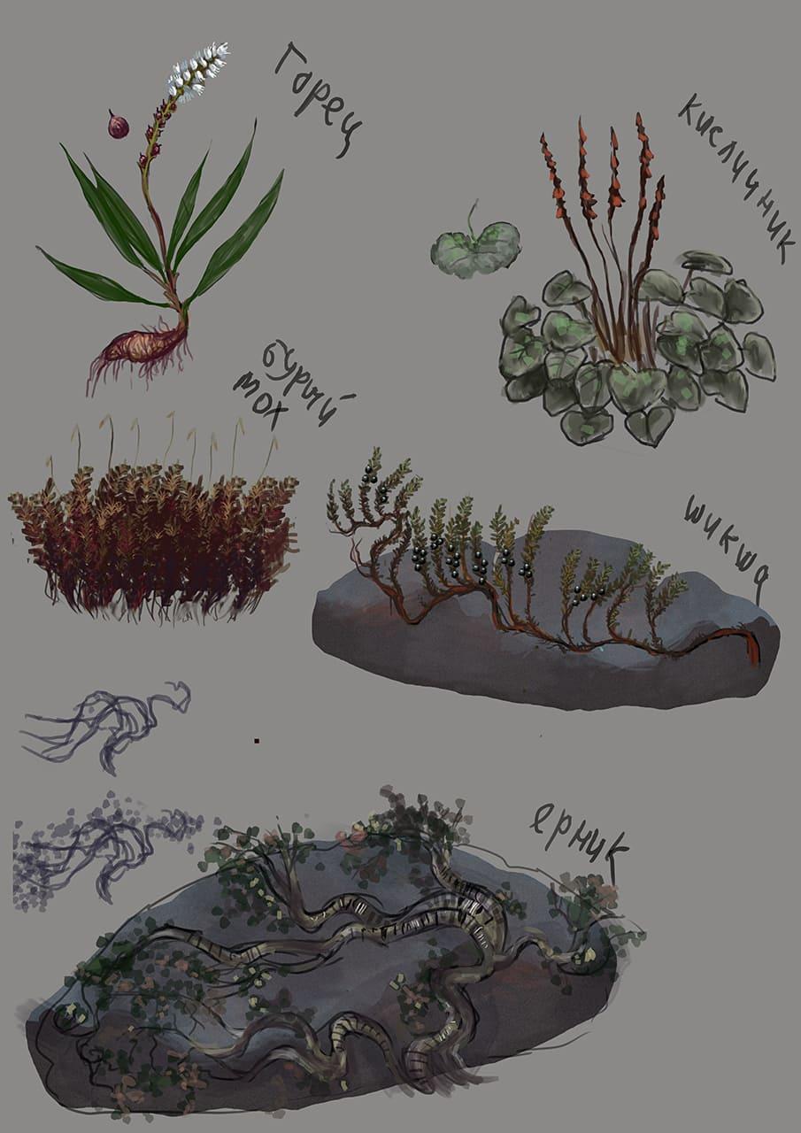 Редкие уцелевшие виды растений